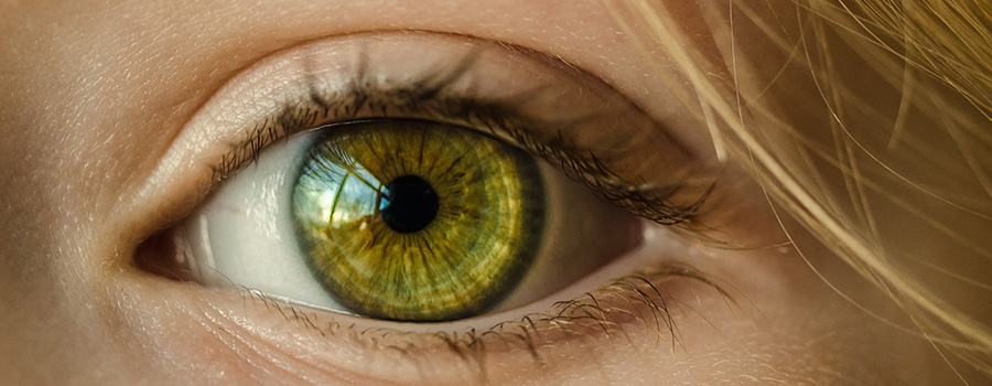Close up of green eye ball. Dispensary marketing plan. Cannabis marketing ideas. Marijuana marketing tips.