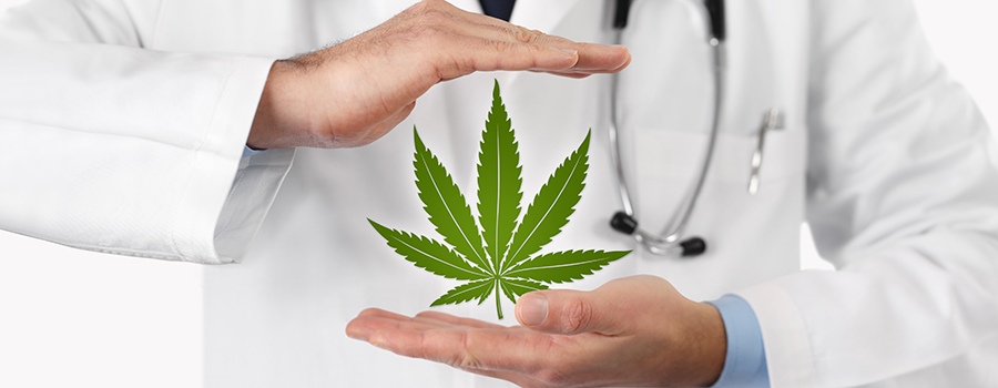 Marijuana leaf graphic in between a medical marijuana doctor's hands. Medical marijuana marketing strategies. Medical marijuana marketing agency Canada. 420Digital.ca Cannabis marketing.