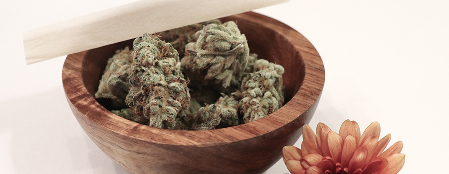 Medical marijuana buds in a wooden bowl. Medical marijuana marketing strategy. Ideas for marketing medical marijuana. Cannabis marketing agency. Dispensary marketing in Canada and USA.