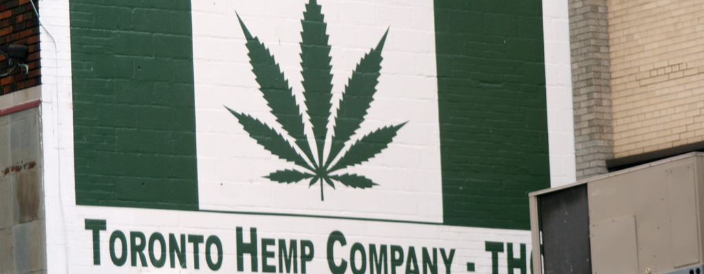 Toronto Hemp Company Sign in Toronto, Ontario. Regulations for dispensaries in Ontario. Ontario regulations for cannabis stores. Dispensary regulations in Ontario. Cannabis marketing agency Canada.
