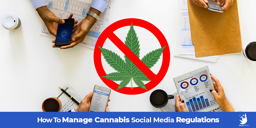 Cannabis digital marketing team working on laptops on a table. Cannabis social media regulations and how to manage them. Social media marketing tips for cannabis retail stores. Cannabis Marketing Agency, Cola Digital. ColaDigital.ca.