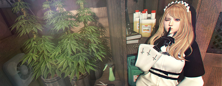 Doll with finger over mouth in Shhhh fashion with cannabis plants next to her. Social media for dispensaries. Dispensary SEO Tips from Cola Digital, Cannabis Marketing Agency Canada and USA.