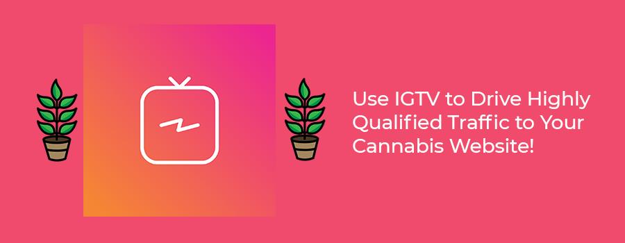 Instagram TV is an effective cannabis social media marketing strategy. Cannabis social media regulations and marijuana marketing tips for dispensaries. Cola Digital Cannabis Marketing Agency Canada and USA. ColaDigital.ca.