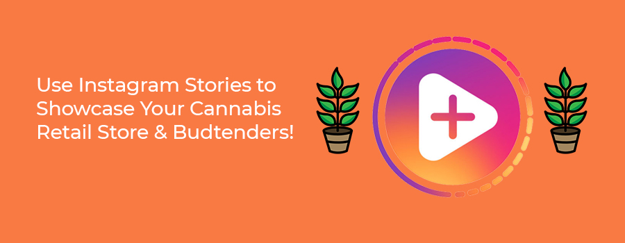 Use Instagram Stories for cannabis retail store marketing strategy. Cannabis social media regulations and marijuana marketing tips for Facebook and Instagram. Cola Digital Cannabis Marketing Company Canada and USA. ColaDigital.ca.