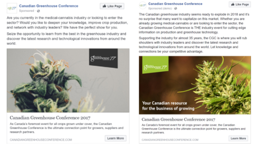 Facebook ad screenshot examples of cannabis ads on Facebook. Can you advertise medical cannabis on Facebook. Marijuana Marketing Agency.