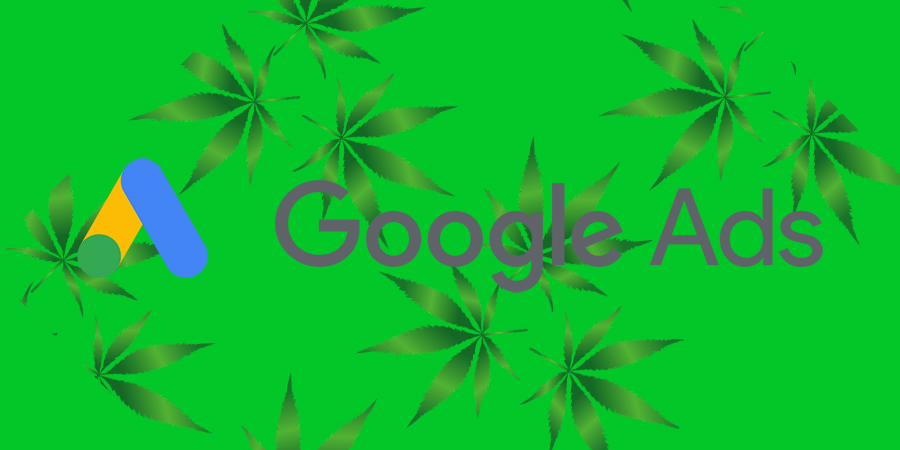 Google Ads logo over marijuana leaves. Can you advertise medical cannabis on Google. Google Ads for CBD and marijuana dispensaries.