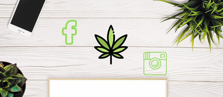 Cannabis social media management company Canada and USA. Cola Digital Cannabis Marketing and Dispensary SEO. ColaDigital.ca.