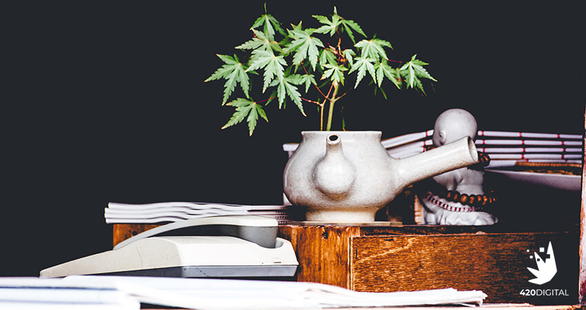 Teapot with cannabis plant inside. CBD marketing. Marijuana marketing agency.