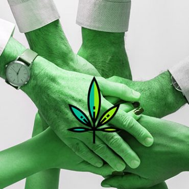 Hands stacked on top of each other in solidarity. Cannabis marketing plan. DIspensary marketing strategy. Cola Digital Cannabis Marketing Company Canada and USA. ColaDigital.ca.