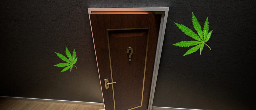 How To Open a Dispensary in Ontario FAQ  Cannabis Retail Store Rules