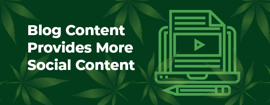 Your marijuana marketing strategy should include optimized blog articles. These can also be shared on social media to drive traffic back to your marijuana website. Marijuana marketing agency.