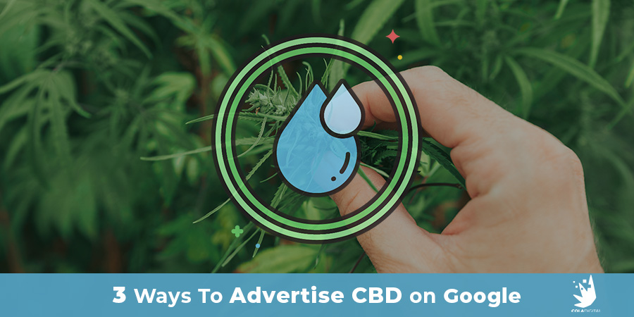 Blog Header Image: can you advertise cbd on google bing search. CBD marketing agency USA and Canada.