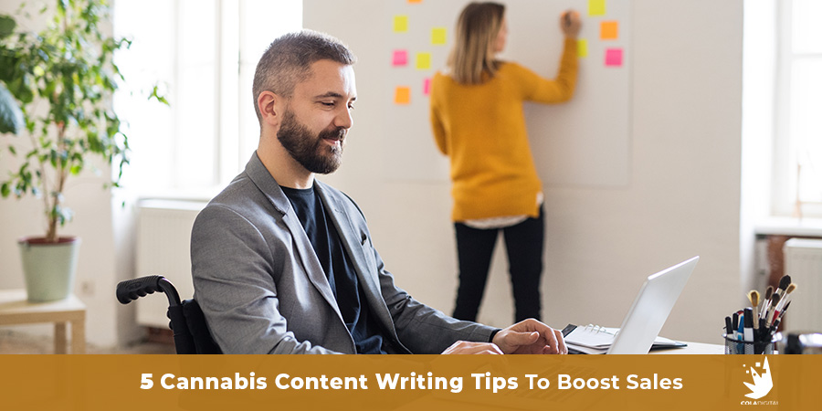 2 cannabis business people working in a modern office. Cannabis content writing services. Cannabis content strategy. Cannabis content marketing agency.