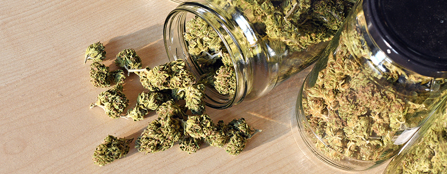 cannabis buds in a jar from an ontario dispensary.