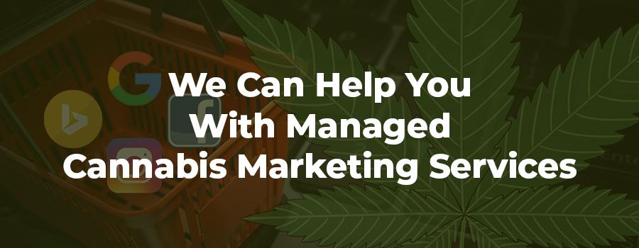 Cannabis marketing agency coladigital.ca provides CBD companies with experienced, managed, marijuana marketing services.