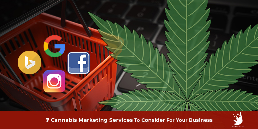 Top cannabis marketing services for Canada and USA.