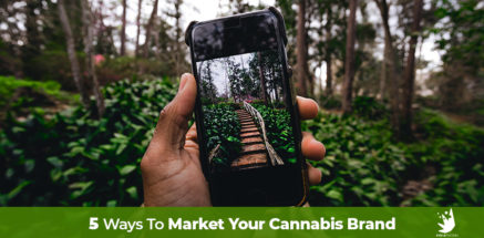 Hand holding a cell phone focused on a garden path, How to market your cannabis brand and remain compliant. Cannabis marketing agency, Marijuana SEO company.