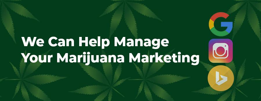 We can help manage your marijuana marketing strategy. ColaDigital.ca Marijuana marketing agency. SEO for marijuana companies.