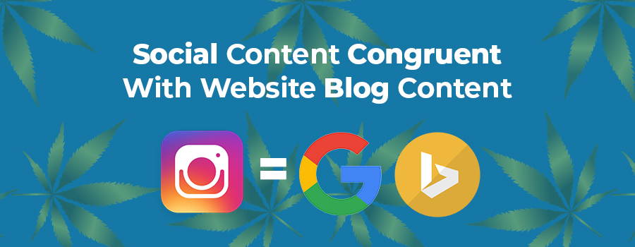 Marijuana marketing strategy tips include ensuring that your social content is congruent with your website blog content. Marijuana SEO marketing tips. Marijuana marketing agency.