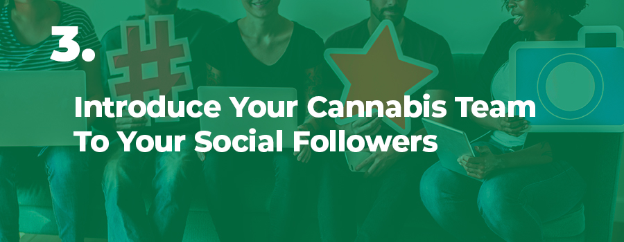 Adults sitting in a dispensary on laptops. Social media marketing tips for cannabis companies and marijuana dispensaries. Cannabis social media marketing company. how to market cannabis on facebook.