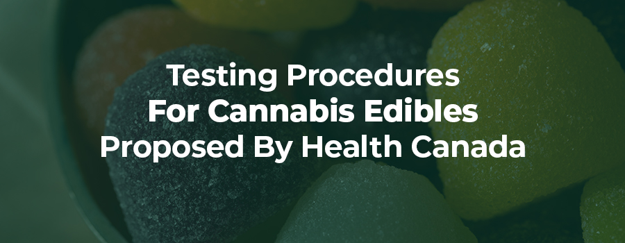 edible gummy bears candy. regulations for edible cannabis.