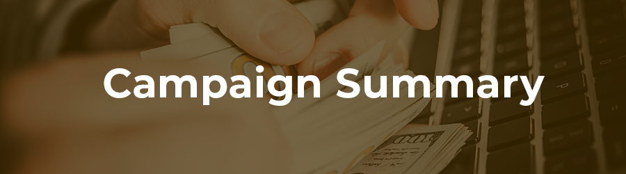 Campaign summary for dispensary marketing. advertising on google for dispensaries.