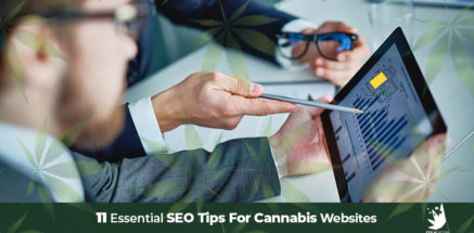 Cannabis SEO consultant explaining stats for SEO marketing for CBD hemp products. Cannabis SEO agency ColaDigital.ca.