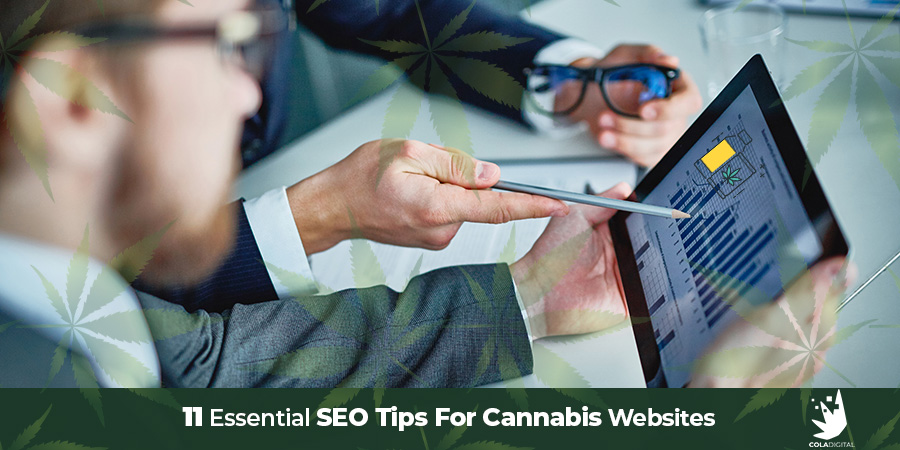 Cannabis SEO consultant explaining stats for SEO marketing for CBD hemp products. Cannabis SEO agency ColaDigital.ca.