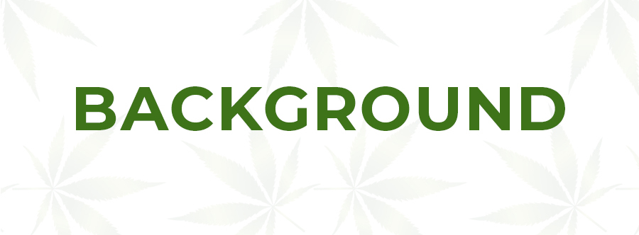 Client background - CBD case study for tinctures and edibles. ColaDigital.ca cannabis and CBD marketing agency.