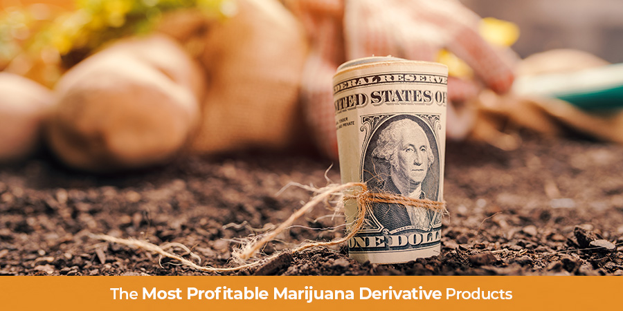 Marijuana Marketing. Marketing Cannabis products online USA. marketing cannabis products online.