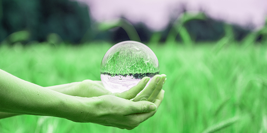 female hands holding a crystal ball. cbd marketing ideas.
