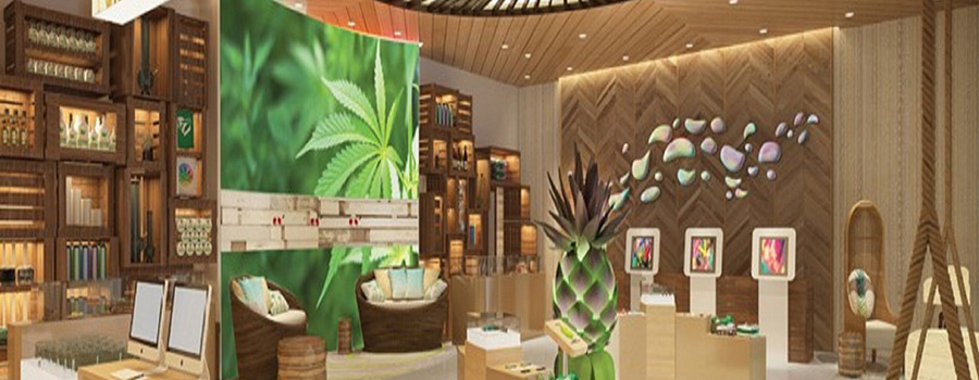 inside of a cannabis dispensary. marketing company for cannabis retail stores and dispensary SEO strategy.