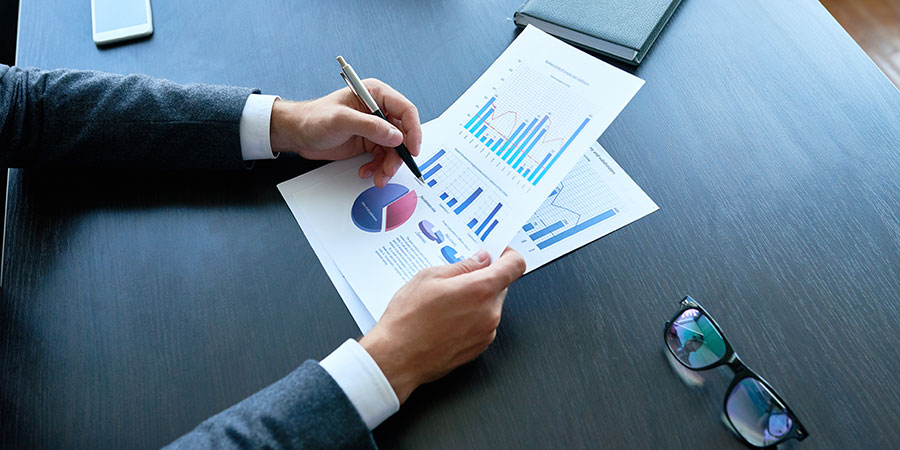 cannabis business consultant analyzing statistics report