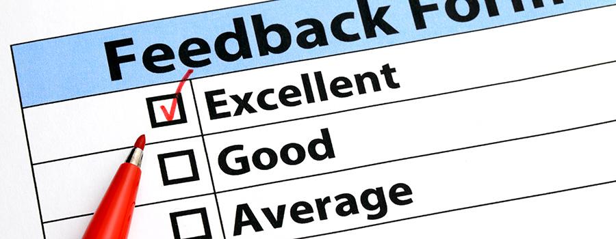 feedback-form-cannabis-consulting-agency