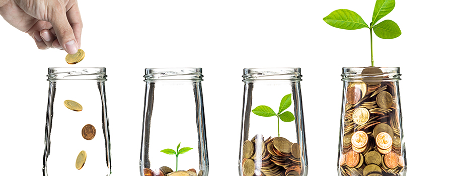 hand putting gold coins into bottle. marijuana dispensary seo strategy tips.