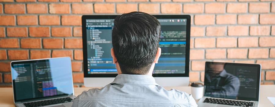professional developer programmer for cannabis and cbd websites.