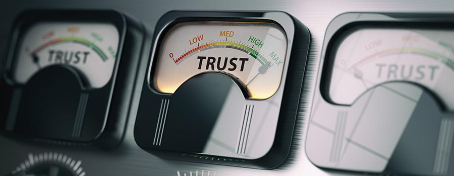 brand trust for CBD companies. Digital marketing and SEO company For CBD hemp businesses.