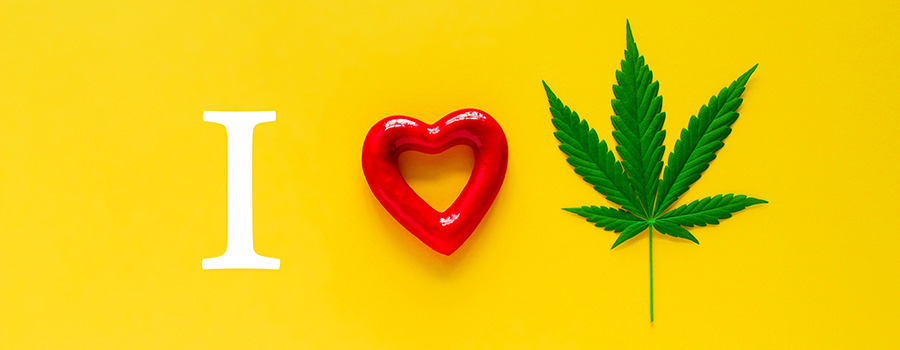 leaf. google-advertising-for-marijuana-mail-order