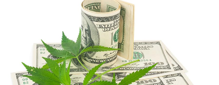 US Cash 100 dollar bills on top of cannabis leaves. Marijuana dispensary SEO strategy.